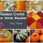 Tunisian Crochet Ten Stitch Blanket – Free Pattern