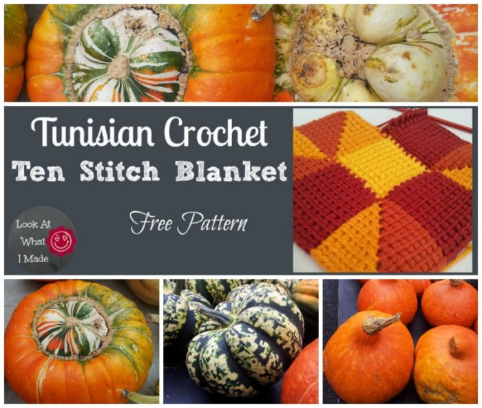 Tunisian Crochet Ten Stitch Blanket Pattern Fall