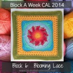 Block 6:  Blooming Lace Square {Photo Tutorial}