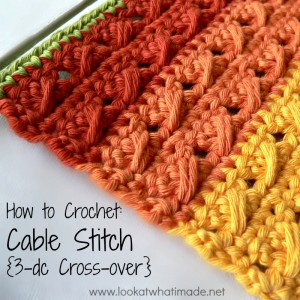 How to Crochet: Cable Stitch