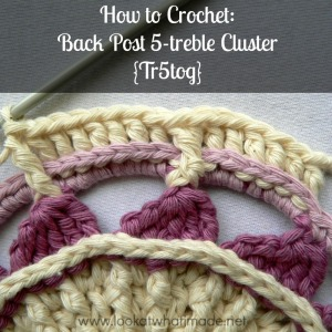 How to Crochet:  Back Post 5-treble Cluster {Tr5tog}