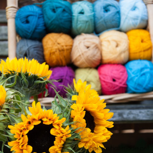 Colour Crafter Yarn and a New Project