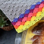 Crochet Shell Stitch Dishcloth