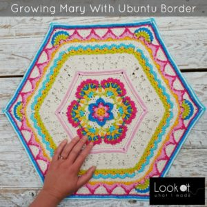 Growing Mary's Memory With the Ubuntu Border